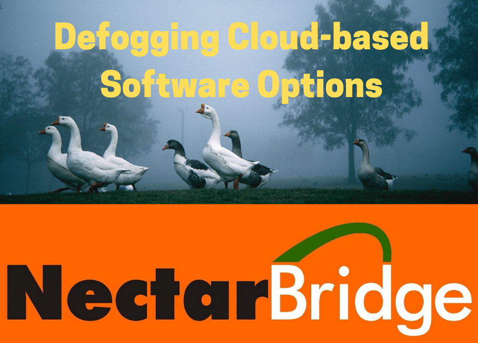 Defogging Cloud-based Software Options